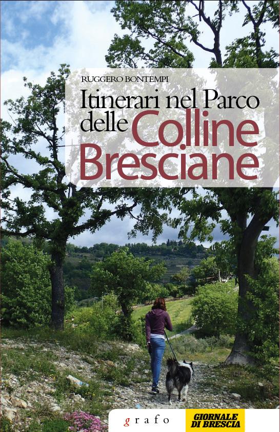 Itinerari nel parco delle colline bresciane grafo edizioni for Catalogo bricoman rezzato brescia